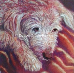 Dog day afternoon pastel sec encadré